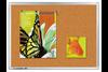 Pinboard LM Kork UNIVERSAL 45x60 cm, Art.-Nr. LM142035 - Paterno B2B-Shop